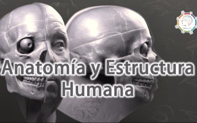 ANATOMÍA y ESTRUCTURA HUMANA