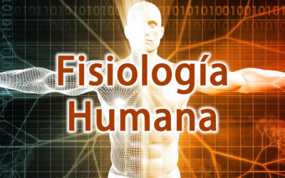 CURSO FISIOLOGÍA HUMANA